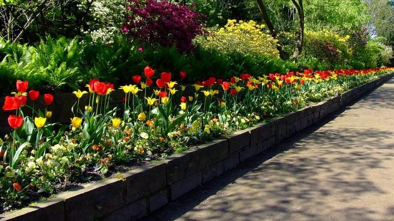 bordure per aiuole per rendere originale il tuo giardino